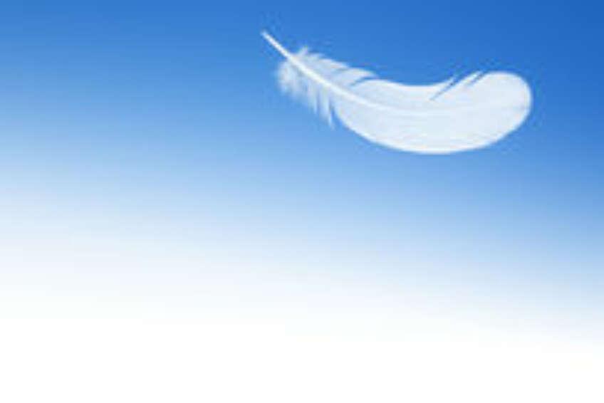 Plume Sur Le Fond Du Ciel Bleu 53510613